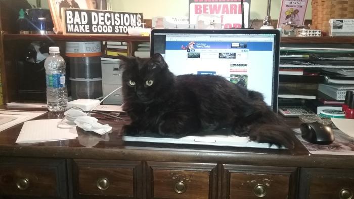 Pash on computer